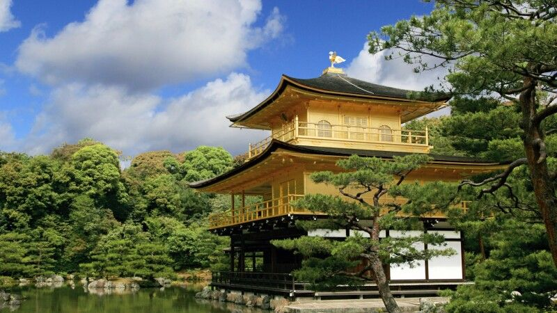 Der Goldene Pavillion in Kyoto © Diamir