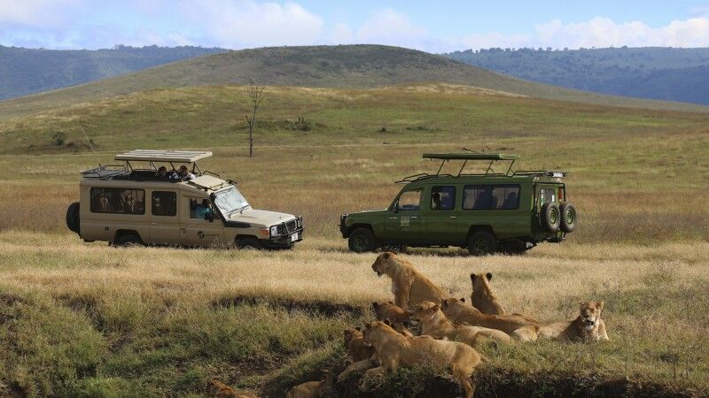 Auf Safari © Diamir