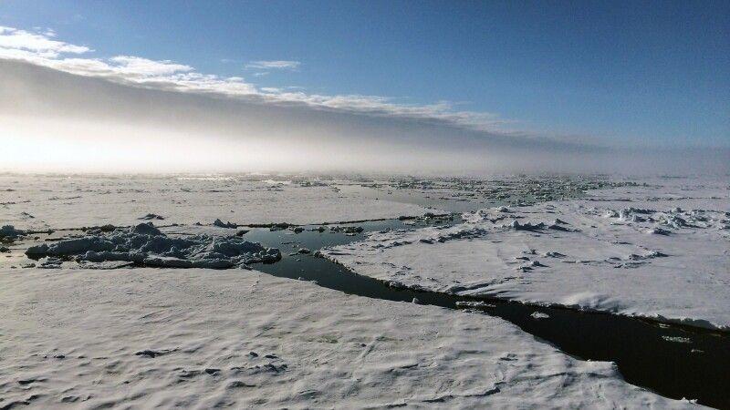 Mitternachtssonne: Spitzbergen im Juni bedeuten 24 Stunden Tageslicht © Diamir