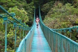 Hängebrücken in Monteverde - der Dschungel aus der Vogelperspektive
