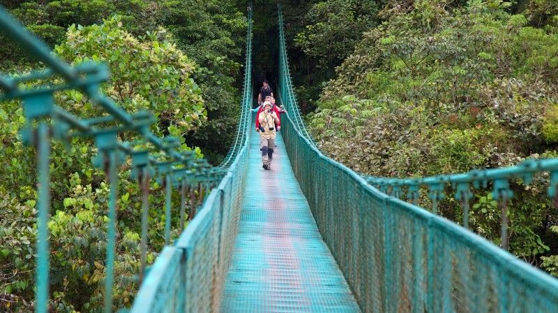 Hängebrücken in Monteverde - der Dschungel aus der Vogelperspektive © Diamir