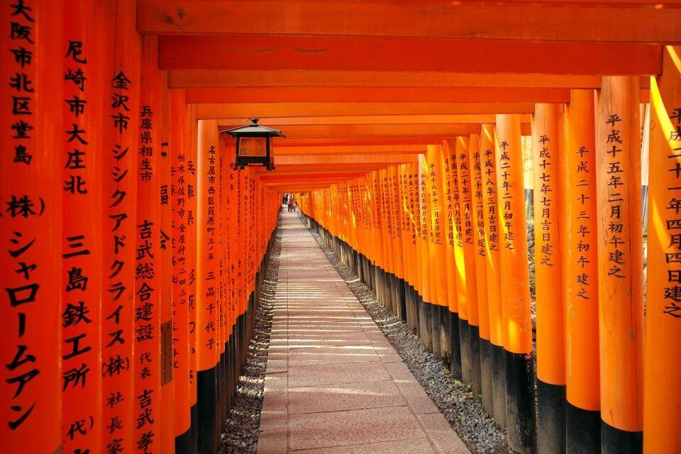 Inari Schrein in Kyoto