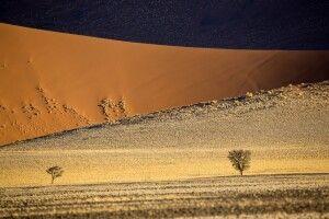 Großer Sandkasten, die Namib-Wüste