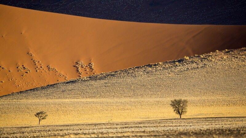 Namib Wüste © Diamir