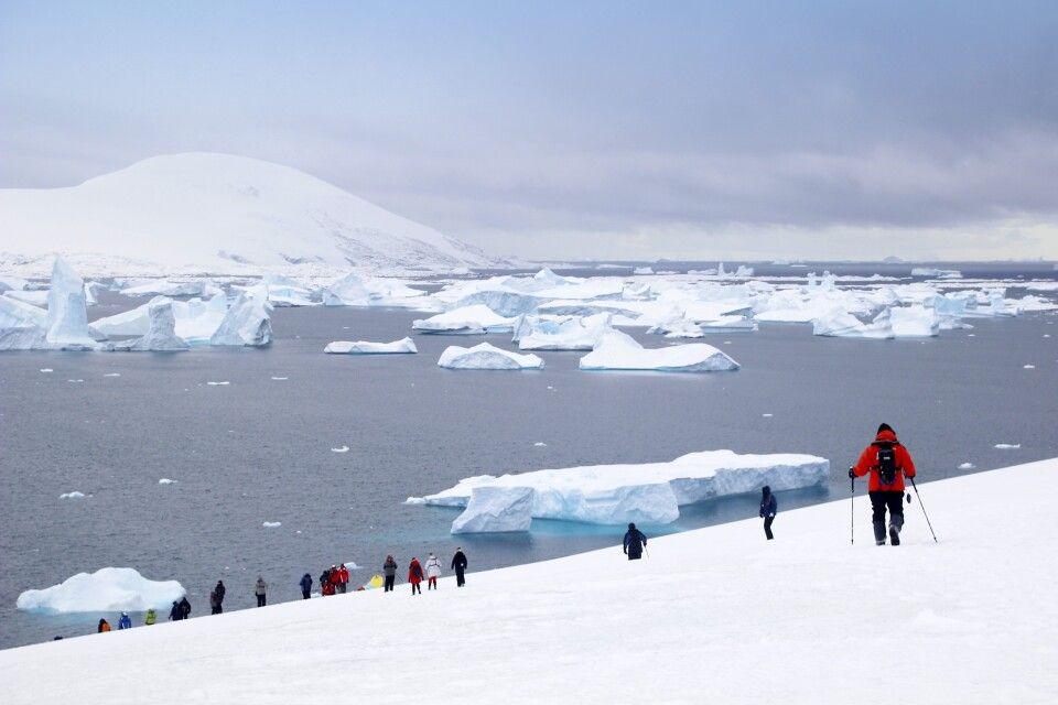 Wanderer vor zahllosen Eissbergen
