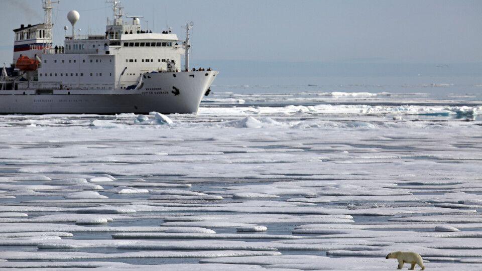 Eisbär vor Schiff in der Nordwest-Passage