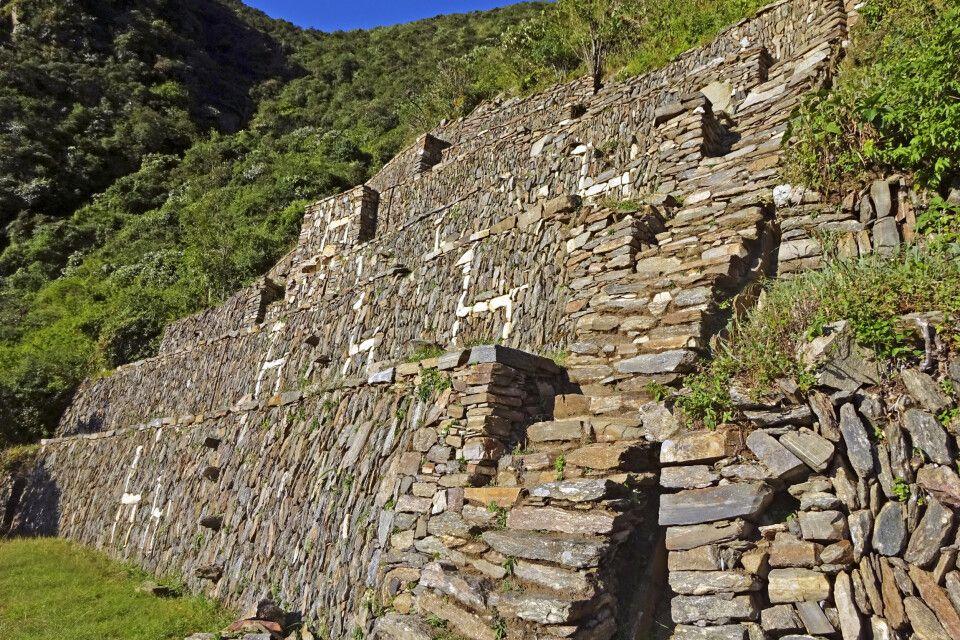 Die Lama-Terrassen von Choquequirao