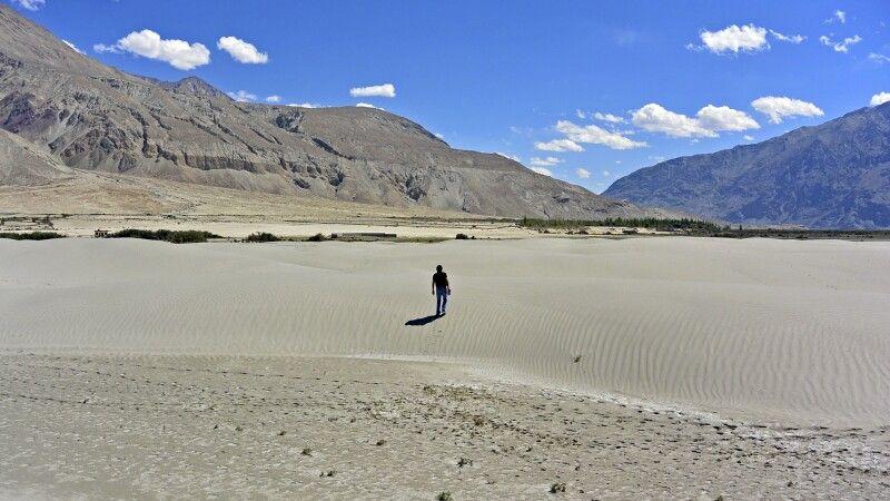 Nubra Valley, Sandünen zwischen Tirit und Lughzhun am Nubra-Fluss © Diamir