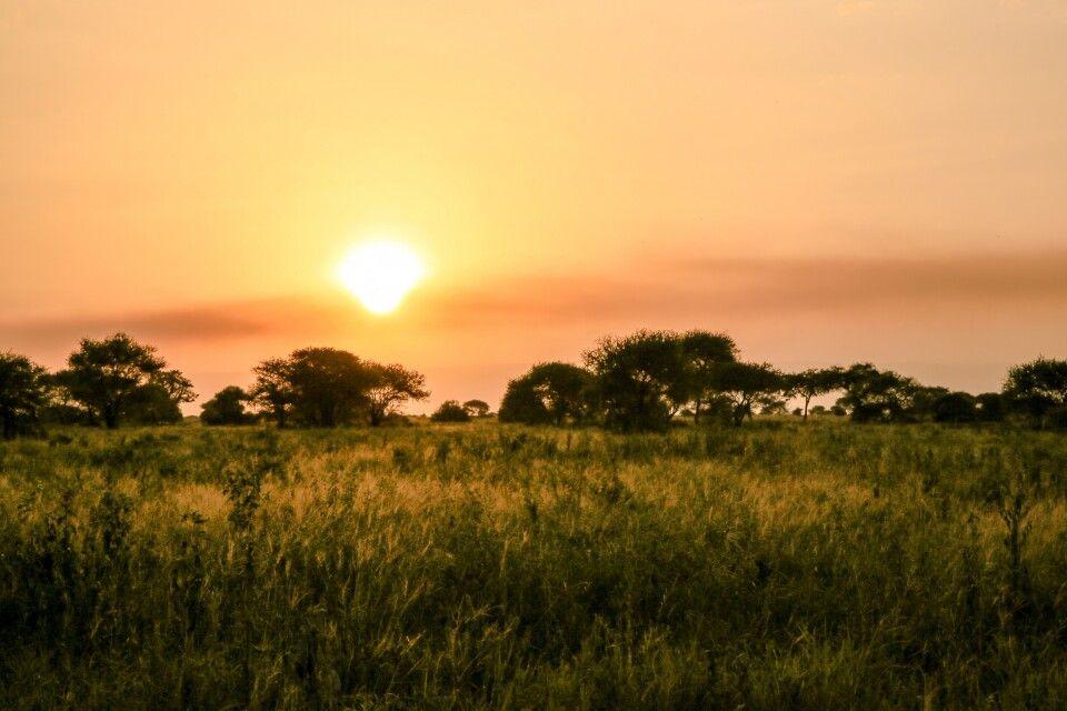Ein Afrikanischer Sonnenuntergang