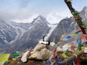 Blick vom Tsergo Ri auf den Kimshung (6760m).