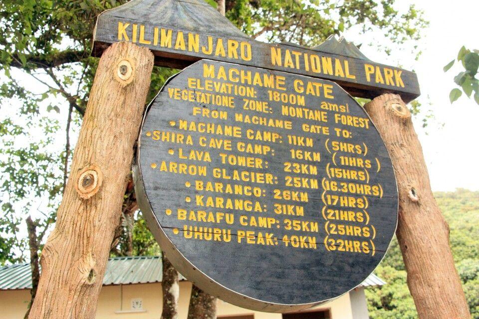 Wir wollen den Kilimanjaro über die Machame Route besteigen.