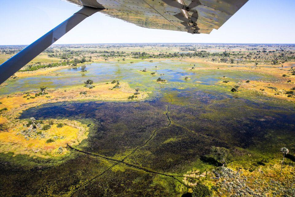Luftaufnahme vom Okavango-Delta