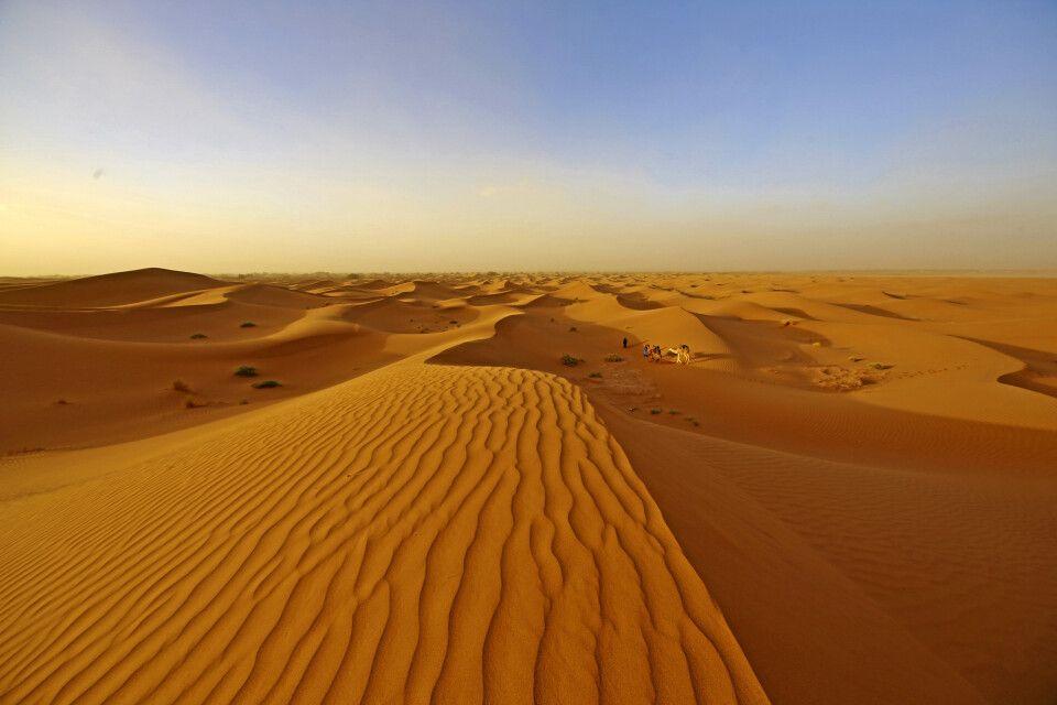 Wüstenlszenerie