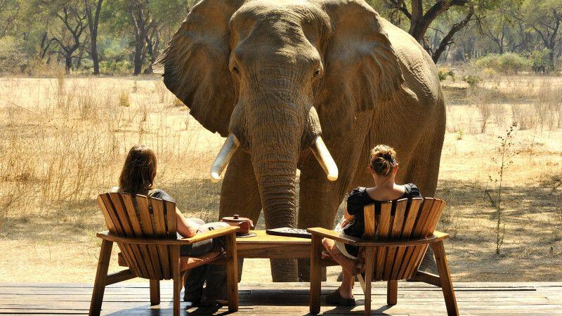 Elefantenbesuch im Old Mondoro Camp © Diamir