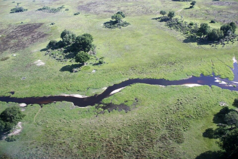 Fly-In-Safari im Okavango-Delta