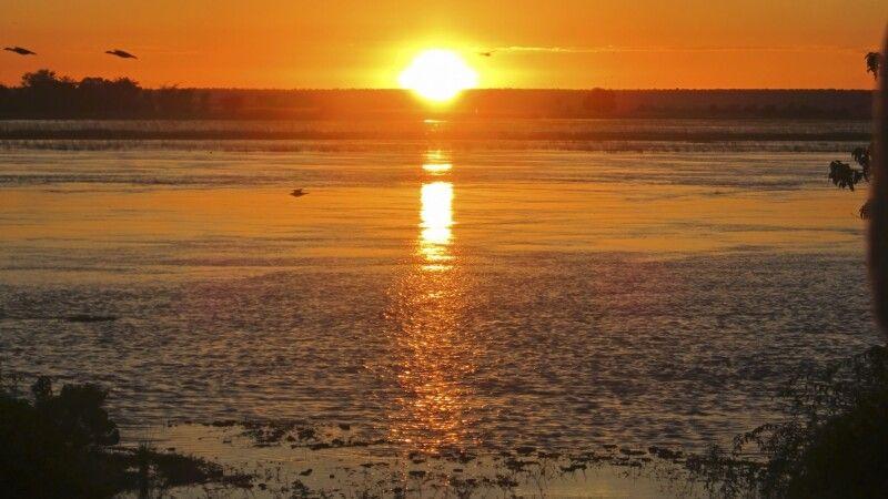 Sonnenaufgang am Chobe © Diamir