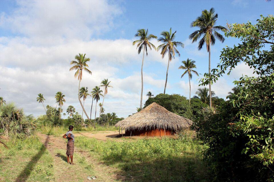 Ndau-Gehöft, Sofala-Provinz