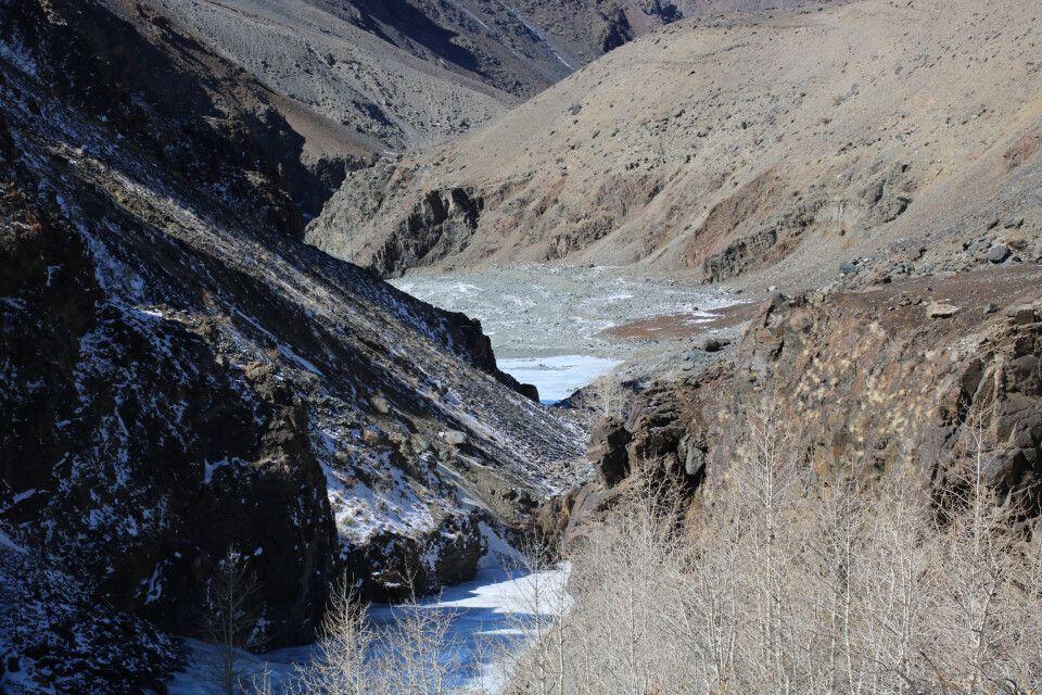 Den Schneeleoparden das Tal hinauf gefolgt