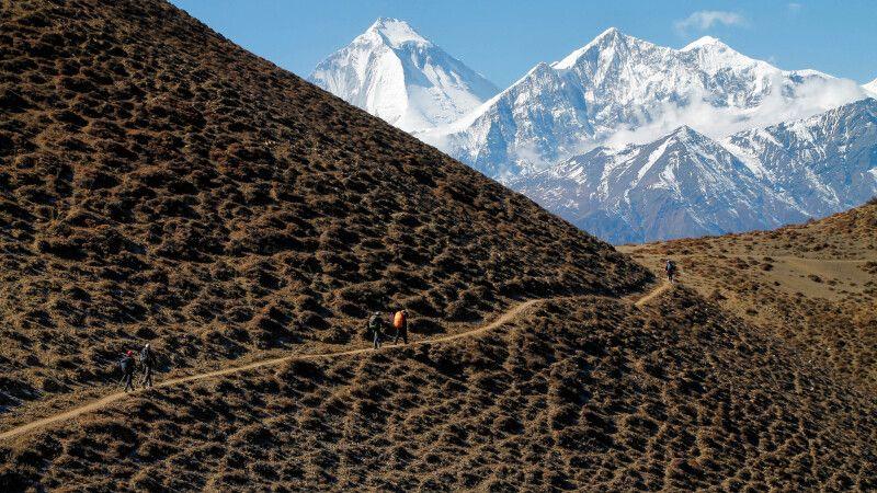 Imposante Eisriesen zum Greifen nah: Dhaulagiri (8167m) und Tukuche Peak (6920m) © Diamir