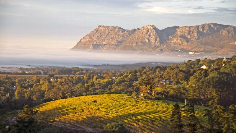 Weingüter und Berge in den Winelands, Cape Wine Route © Diamir