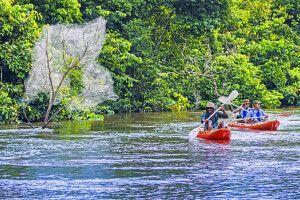 Kajak-Fahrt auf dem Lekoli-Fluss