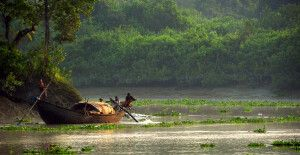 Sunderbans Boot