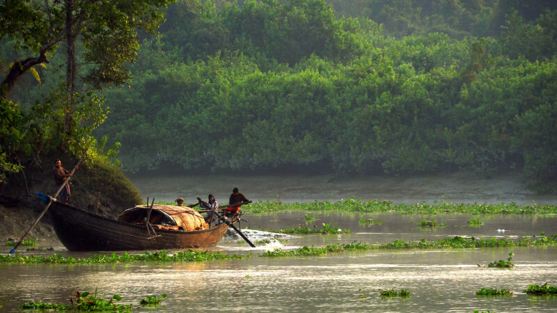 Sundarbans Boot © Diamir