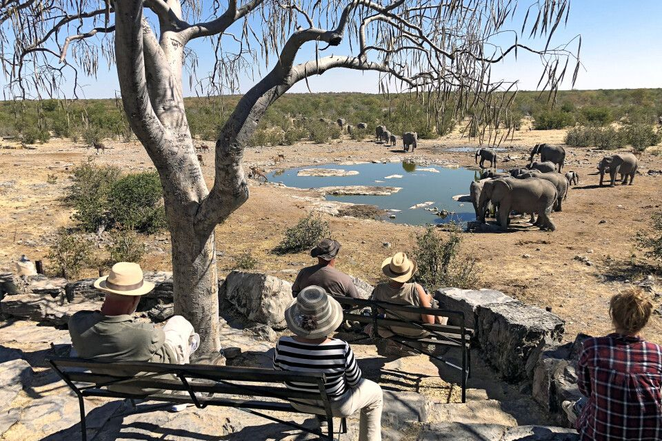 Wasserloch im Halali Camp, Etosha-Nationalpark