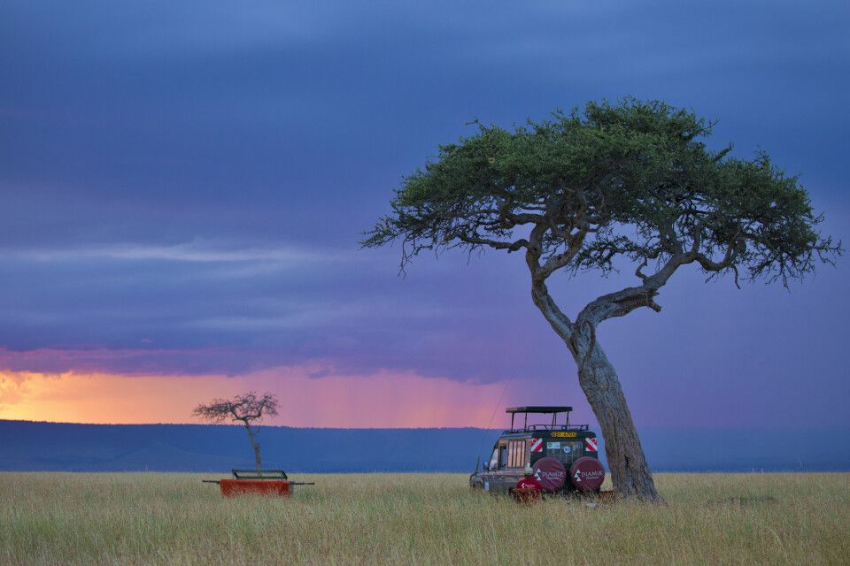 Fahrzeug in der Masai Mara