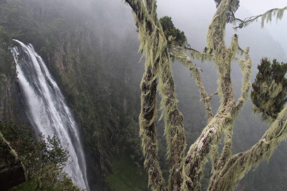 Der Aberdare-Nationalpark ist auch berühmt für seine wunderschönen Wasserfälle.