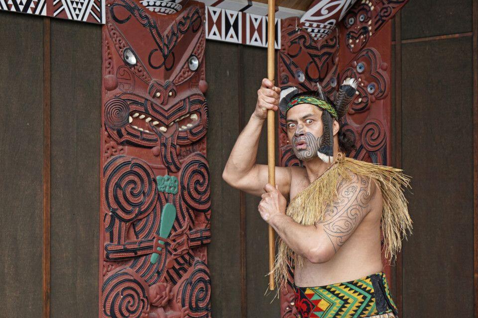 Maori vor Mataatua
