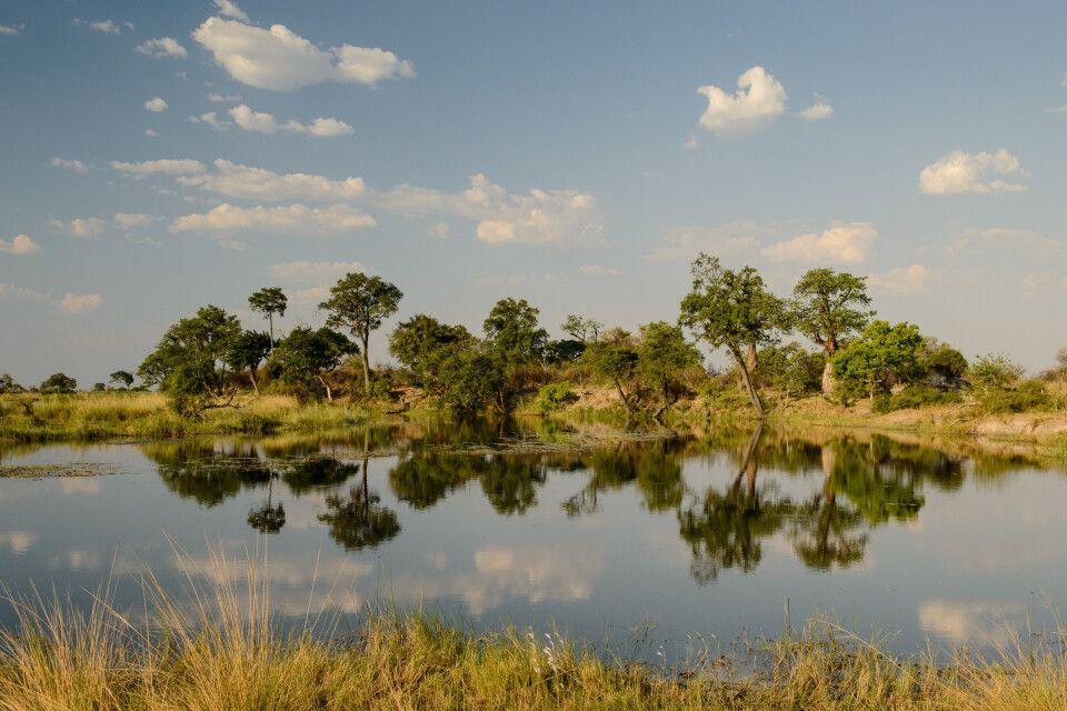 Stille Spiegelung, Kwando Concession