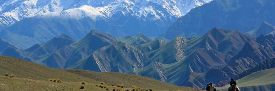 Schafherde in Kirgistan