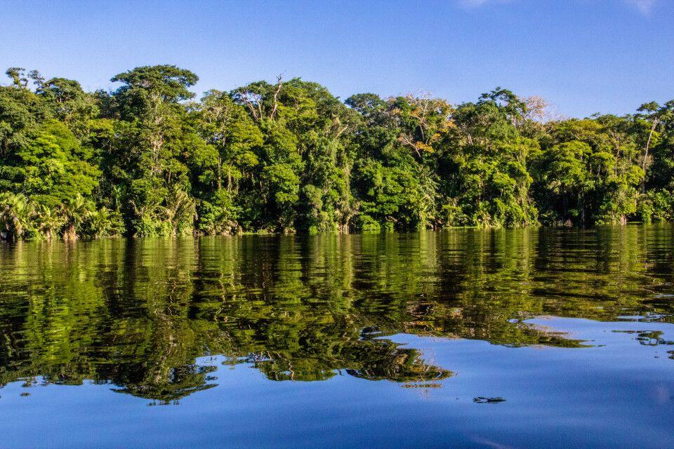 Das ruhige Wasser der Kanäle im Tortuguero-Nationalpark