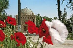 Allee zum Mausoleum