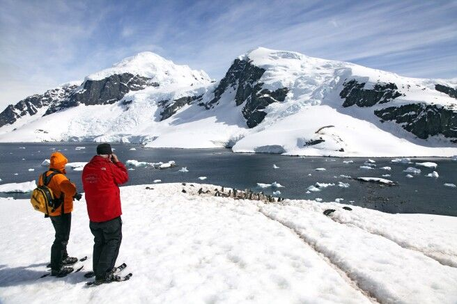 Schneeschuhtour zur Eselspinguin-Kolonie